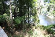 Photo: SUWANNEE RIVER SP