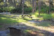 Fire pit up front, picnic table in rear by three pine trees.