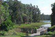 A wooden dock and canoe/kayak launch extending over Lake Dixie. This is the most popular fishing spot in the park.