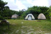 A view of the typical tent camping site you will find at Cayo Costa State Park.