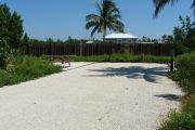 Photo: 025, View of gravel campsite with picnic table and grill. Fence and day-use bathhouse roof in background.