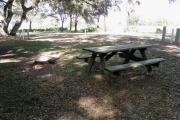 Under the oak shaded picnic table, the horse paddocks can be seen over the traffic pattern island.