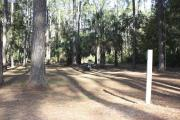 Photo: 15, Campground. View of campsite with fire ring and picnic table.