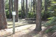 Photo: 16, Campground. View of site with picnic table.