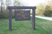 Photo: Shimek Forest Campground