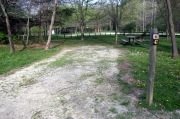 Photo: 047, Lick Creek Unit: Lower Campground