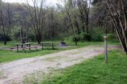 Photo: 050, Lick Creek Unit: Lower Campground