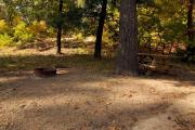 Photo: 014, INDIANA DUNES CAMPGROUND ELECTRIC