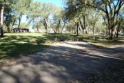 Photo: 005, Cottonwood