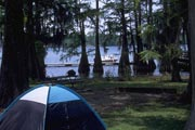 Photo: Lake Bruin State Park