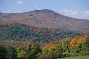 Photo: Mt. Greylock State Reservation