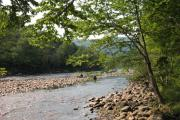 Photo: Mohawk Trail State Forest