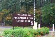 Welcome to Pocomoke River State Park