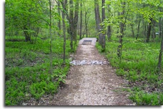 Camping at cedarville state forest md for Md fishing license cost