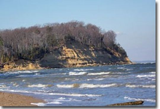 Camping at calvert cliffs state park md for Md fishing license cost