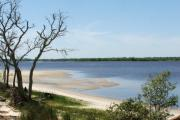 Photo: Carolina Beach State Park