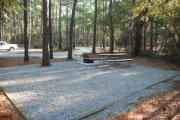 Photo: 009, Carolina Beach Campground
