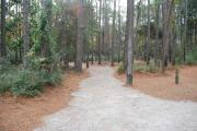 Photo: 010, Carolina Beach Campground