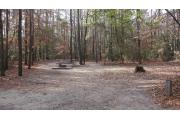 Photo: 010, Cliffs of the Neuse Campground