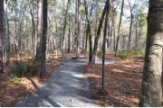 Photo: 007, Goose Creek Primitive Drive In and Hike In Campground