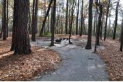 Photo: 009, Goose Creek Primitive Drive In and Hike In Campground