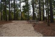 Photo: 012, Goose Creek Primitive Drive In and Hike In Campground