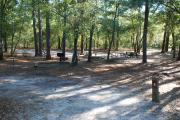 Photo: 003, Lake Waccamaw Primitive Group Camping