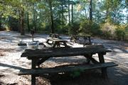 Photo: 004, Lake Waccamaw Primitive Group Camping