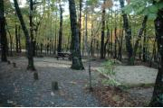 Photo: 050, Hanging Rock Family Campground--Lower Loop