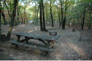 Photo: 053, Hanging Rock Family Campground--Lower Loop