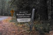 Photo: LIMBERLOST CAMPGROUND