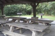 Photo: PINK BEDS PICNIC SHELTER