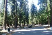 Photo: SUNSET CAMPGROUND GROUP CAMPSITES
