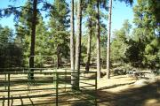 Photo: GROOM CREEK HORSE CAMP