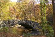 Photo: Rock Creek Park Group Picnic Areas