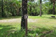 Photo: Gator Head Campground