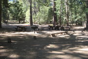 Photo: BUTTERCUP GROUP CAMP