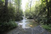 Photo: COVE CREEK ROAD: CREEK CROSSING