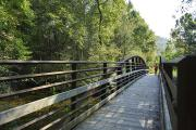 Photo: DAVIDSON RIVER: ART LOEB TRAIL BRIDGE