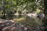 Photo: DAVIDSON RIVER WADING AREA