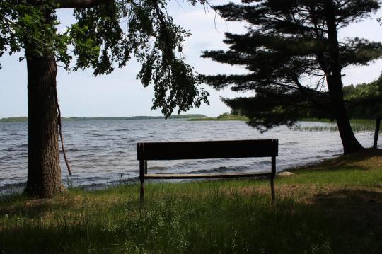 Single Sylvan Lake Women From Red Deer Interested In Red Deer Dating