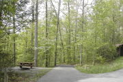 Photo: SENECA SHADOWS