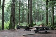 Photo: Tinkham Campground