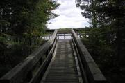 Photo: CADOTTE LAKE