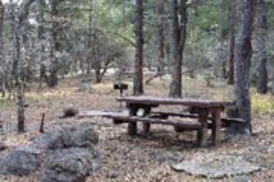 Camping At Blue Springs Ut