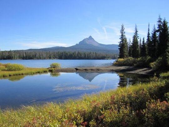 Camping at big lake or for Big 5 fishing license