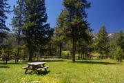 Photo: STOLLE MEADOWS CABIN