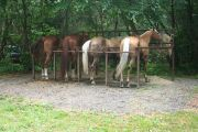 Photo: CATALOOCHEE HORSE CAMP
