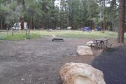 Photo: 022, NORTH RIM CAMPGROUND