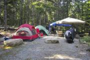 Photo: TENT NONELECT ADA, BLACKWOODS CAMPGROUND